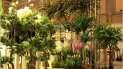 Искусственные растения Флора