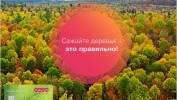 """Внесите реальный вклад в озеленение планеты с картой """"Зеленый мир"""" от Лето Банк"""