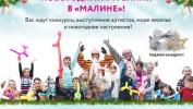 """Новогодний утренник в """"Малине"""" в ТРЦ МАКСИМУМ"""