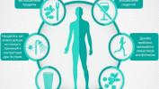 Как укреплять иммунитет
