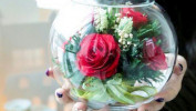 Живые цветы, сохраняющие свежесть более 5 лет – это фантастика или реальность?