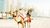 Встречаем Новый год в ОАЭ, 8 дней от 28 400 рублей